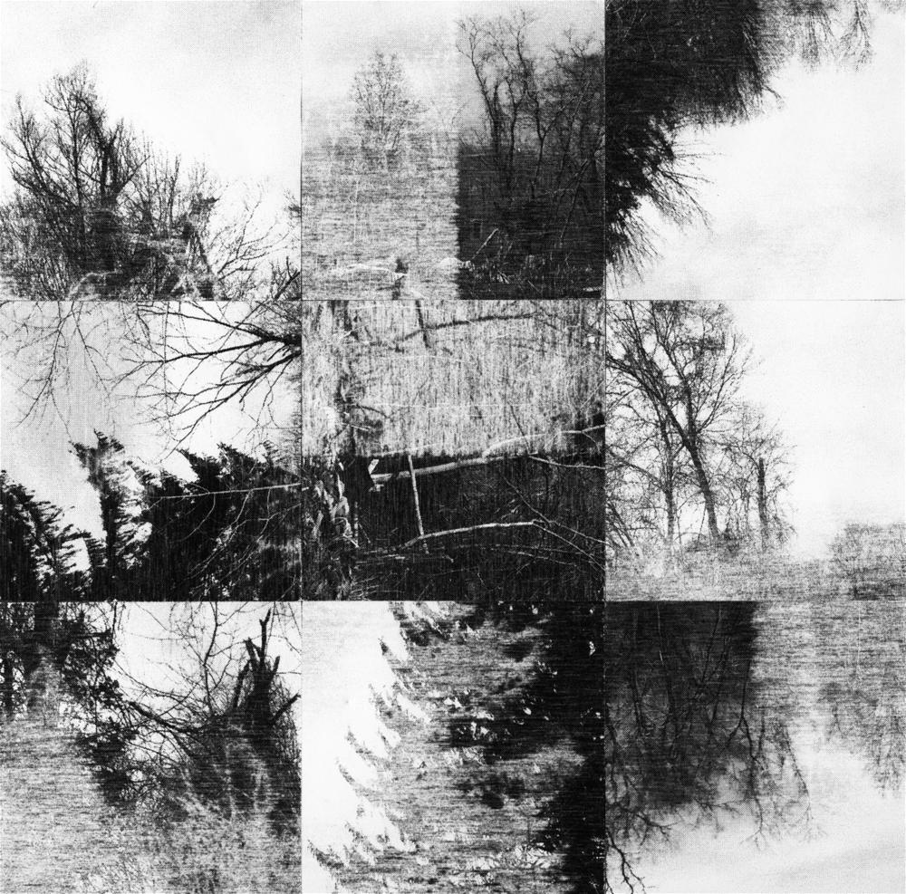 Square_Collage_SylvanPalimpsest_Crop&Trim.png
