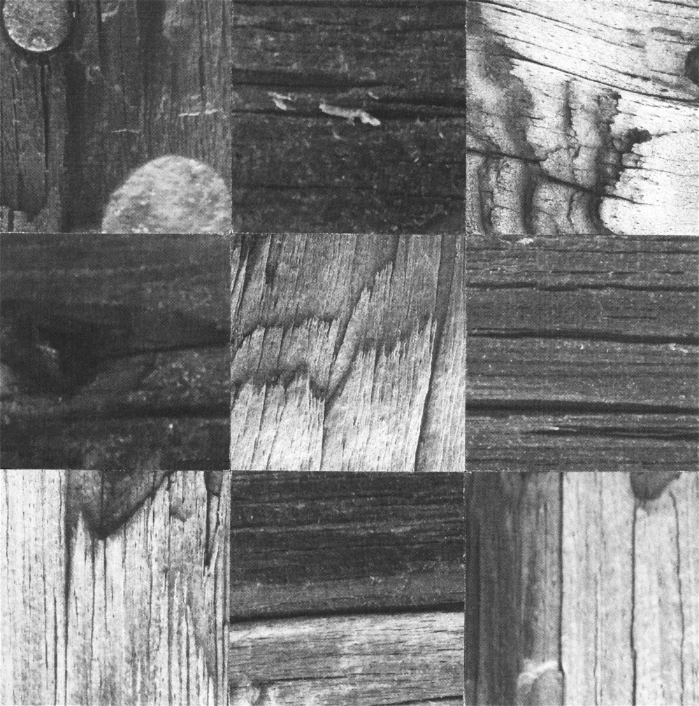 Square_Collages_TelegraphPole_Crop&Trim.png