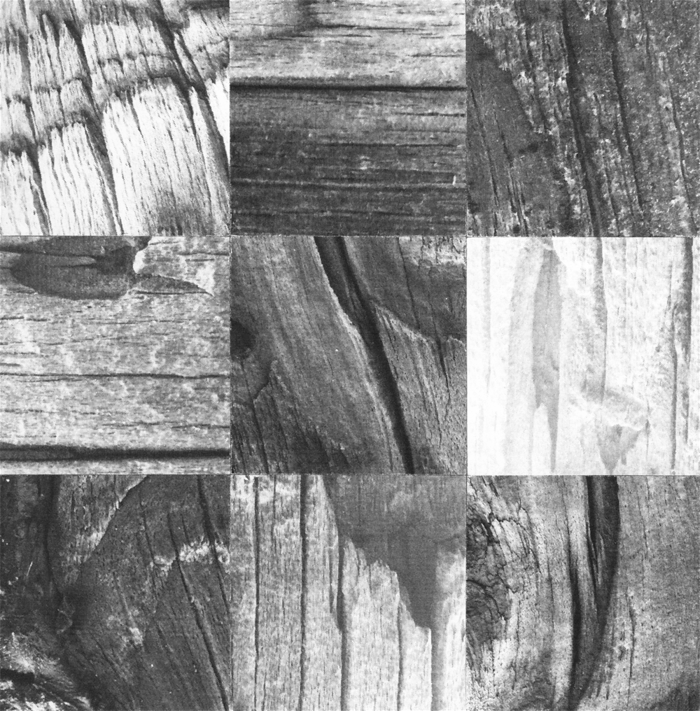 Square_Collages_TelephonePole_Crop&Trim.png