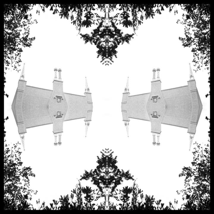 printdesignbutterfly.jpg
