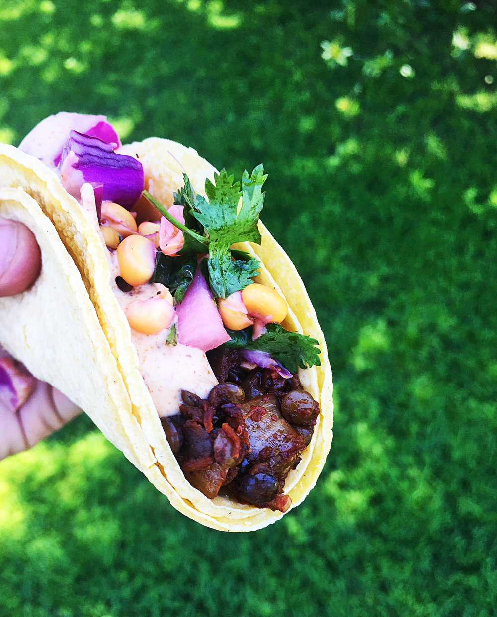 taco in hand.jpg