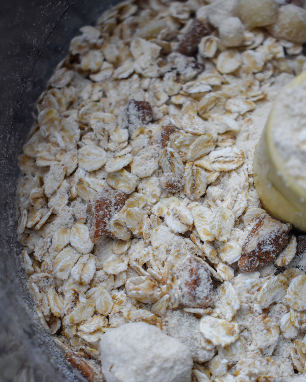 2. Next, add the dry ingredients for the crust (oats, nuts, coconut flour) to a food processor. Pulse until a fine meal is formed. About 15-20 times.