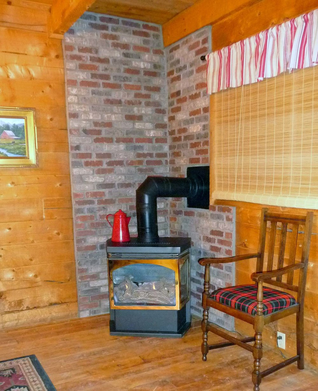 Alpine Gas Log Fireplace 2015.jpg