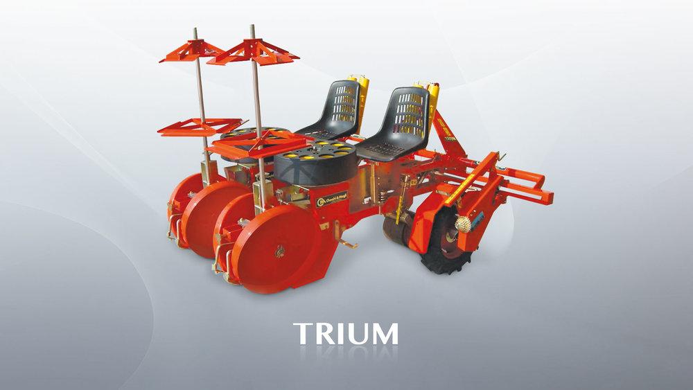 Checchi & Magli Trium.jpg