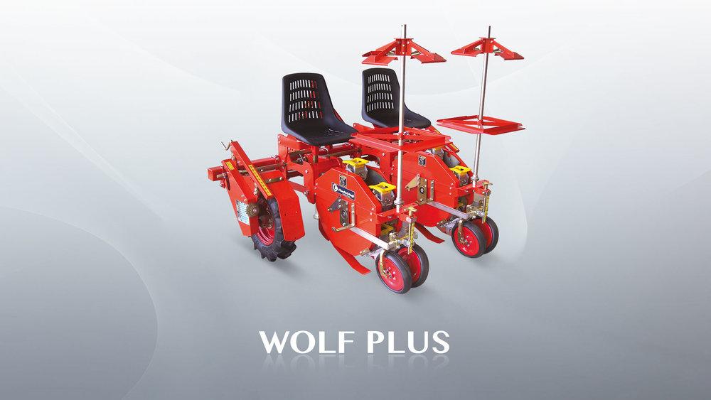 wolf-plus.jpg