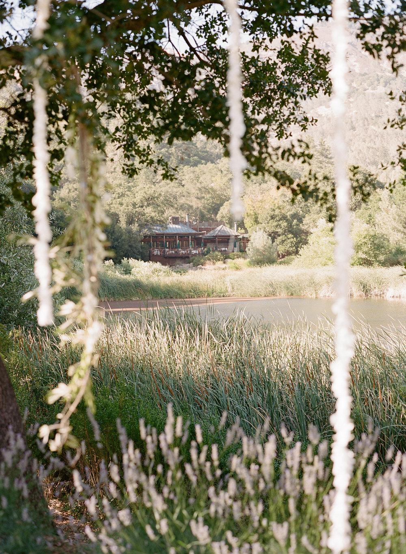Waterlily Wedding at Beaulieu Garden