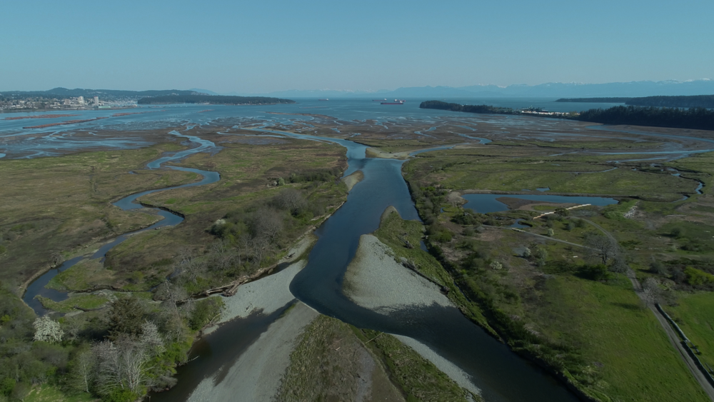 Conservation Drones in Nanaimo, BC -