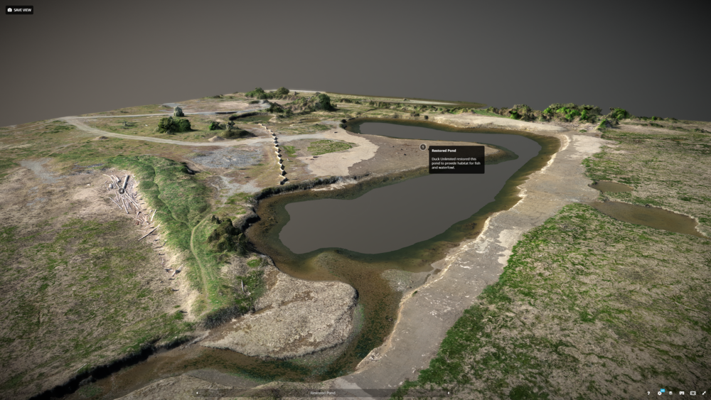 Interactive 3D Content -