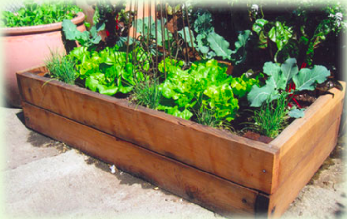 What is a Raised Bed Garden?  - Raised bed gardens are the saviors of gardeners with poor soil everywhere. The basic idea of a raised bed is that instead of battling poor soil conditions, you build above ground, where you have absolute control over the soil texture and ingredients. Including water and fertilizer - Ideal for organic growers!
