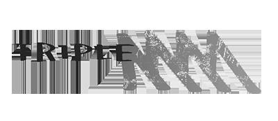 triplem_logo.png
