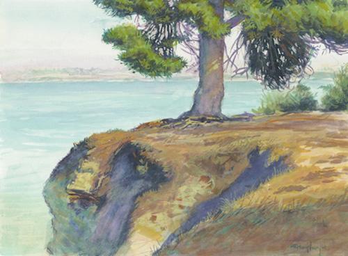 quiet morning along the cliffs.jpg