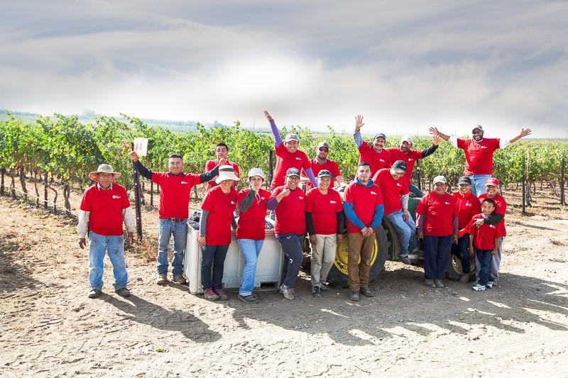 2015 Harvest Crew Picture.jpg