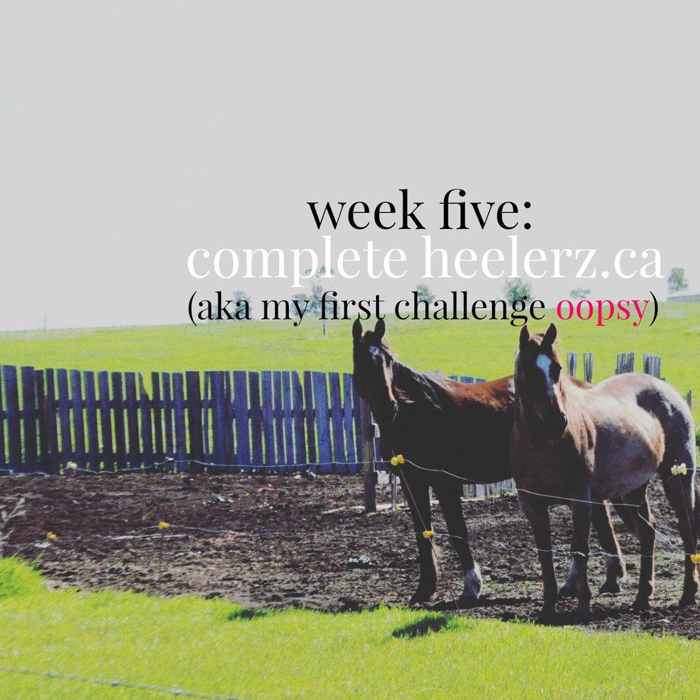 week five.jpg