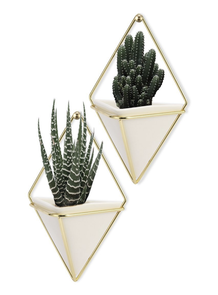 glam plant holder