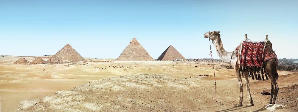 ancient-architecture-camel-931881.jpg