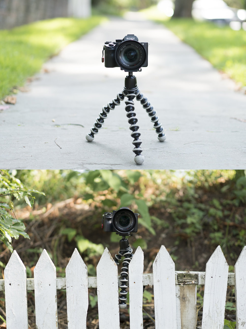travel photography tips gorilla pod