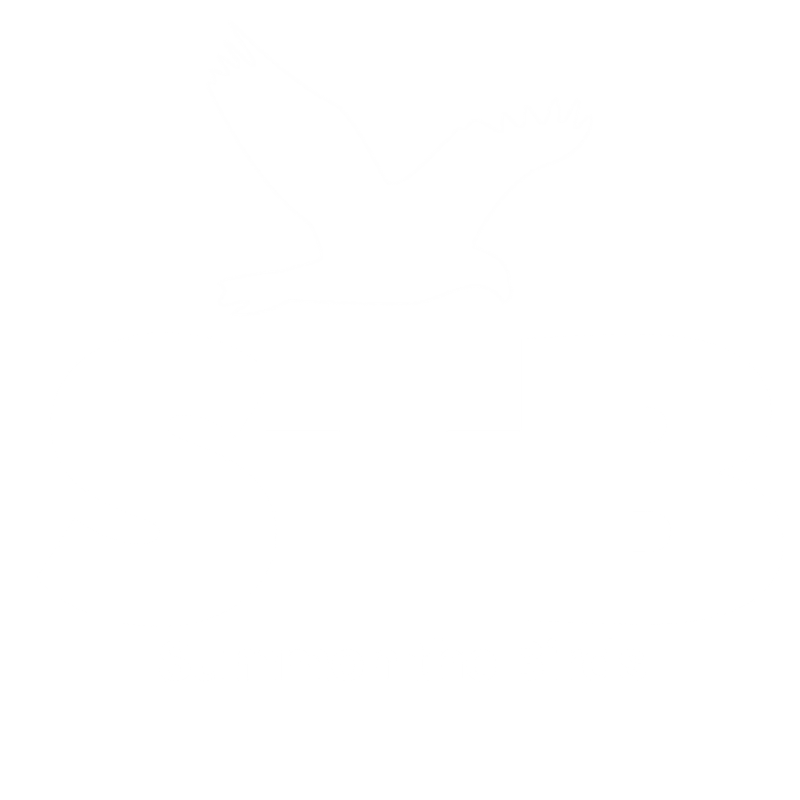 Summon The Birds