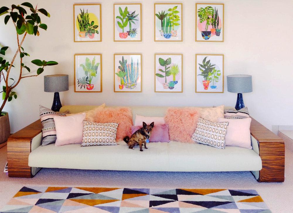 Evie's $100 Zebrawood sofa.