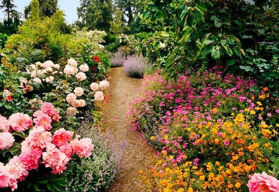 dries garden.jpg