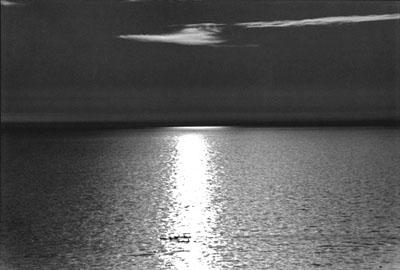 "CHIAROSCURO: ""ROWING AT SUNSET"""