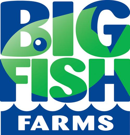 Big Fish hires.png