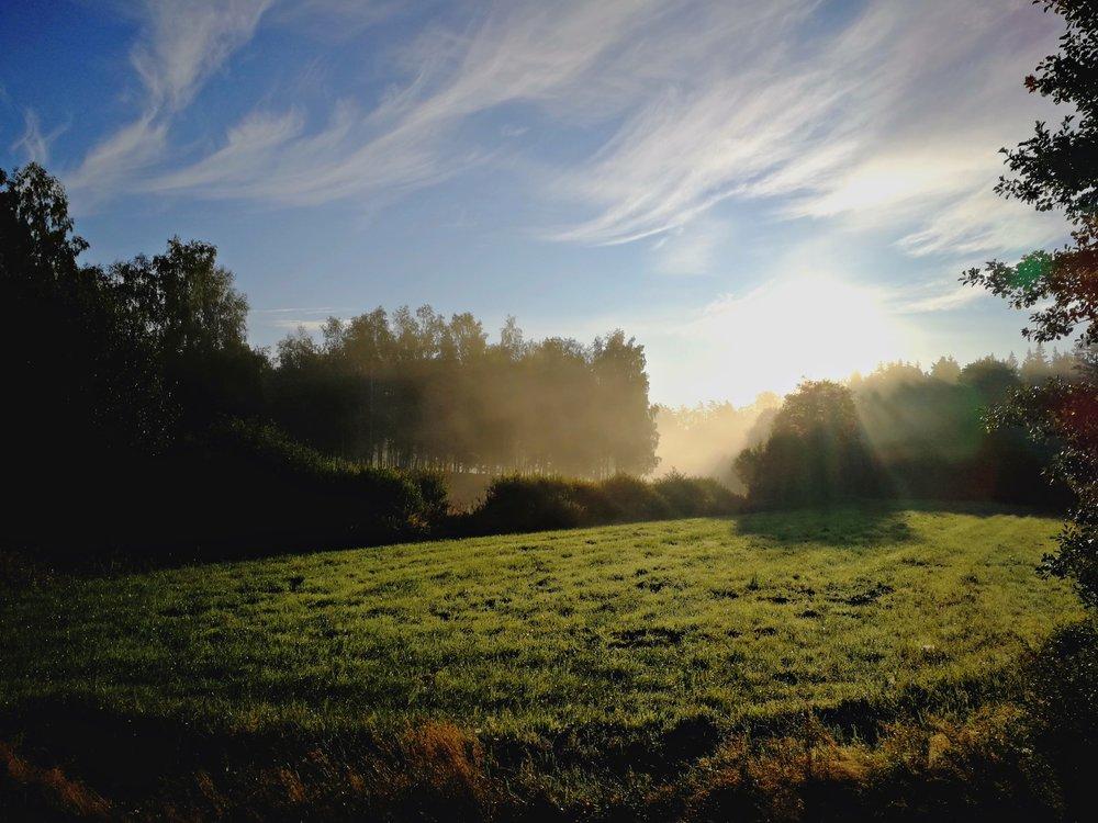 Naturfotografi -