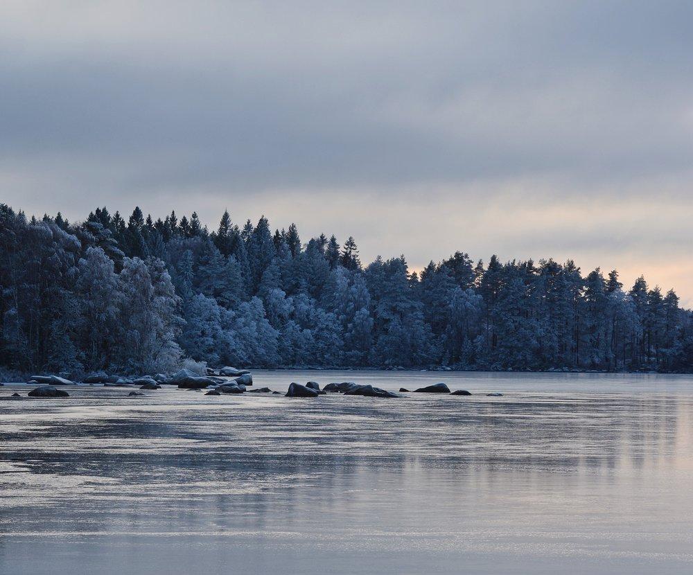 Vinter, svenljunga