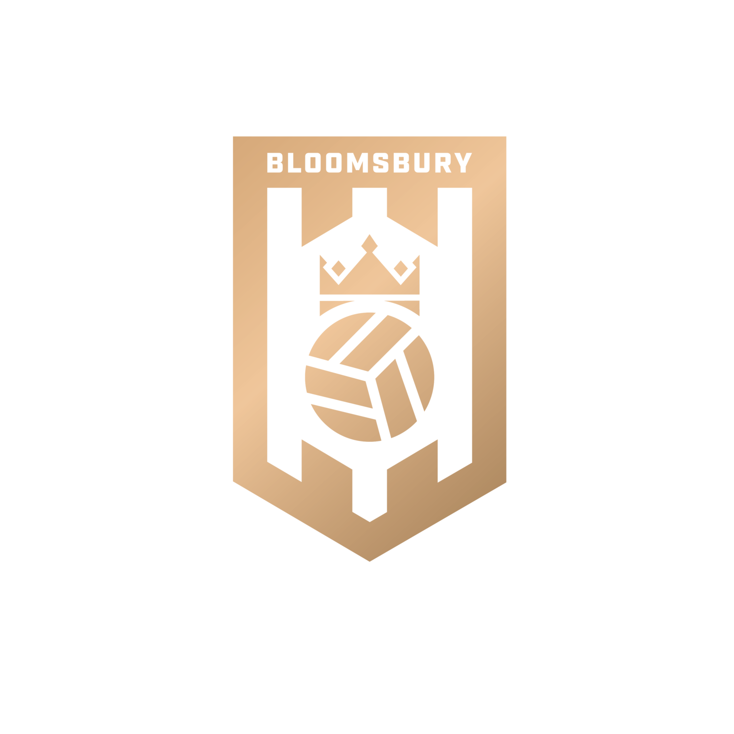 Bloomsbury Football
