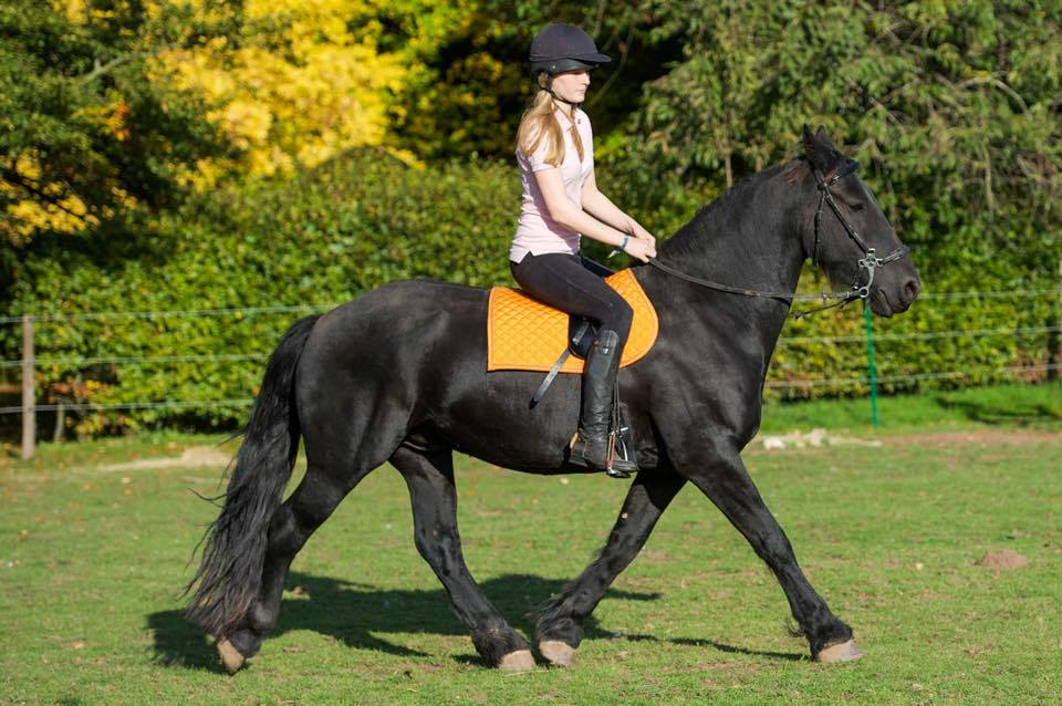 Riding in a Total Contact Saddle