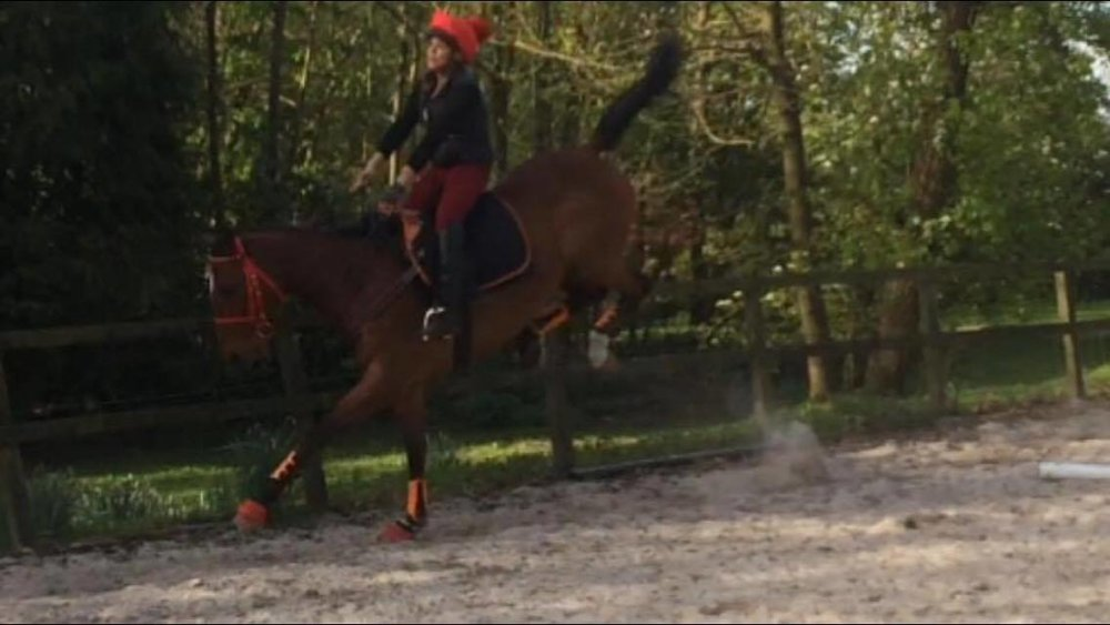 "The TCS client ""RB"" was able to sit out the antics of her horse and felt secure in her TCS despite some 'hairy' bucks - ""RB"" told us that this was pretty normal for her horse and it had NOTHING to do with his TCS."
