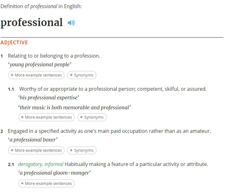 professional definition 1.JPG