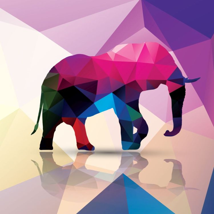 Geometric polygonal elephant, pattern design, vector illustratio
