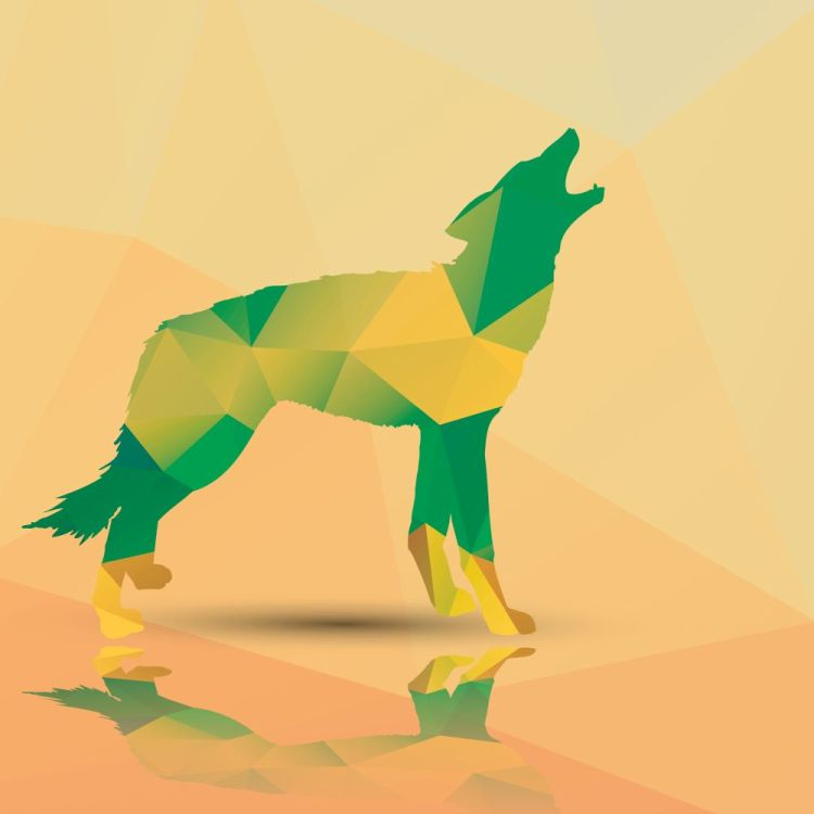 Geometric polygonal wolf, pattern design, vector illustration