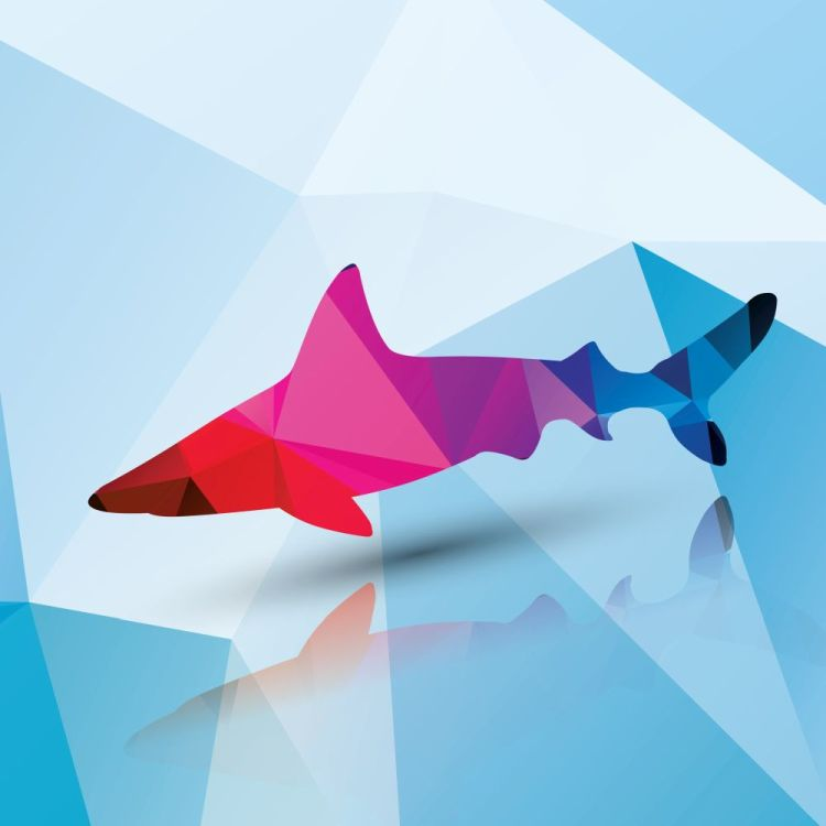Geometric polygonal shark, pattern design, vector illustration
