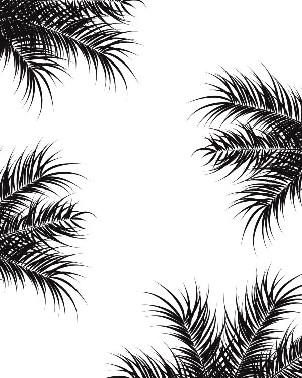 Tropical design with black palm leaves and plants on white backg