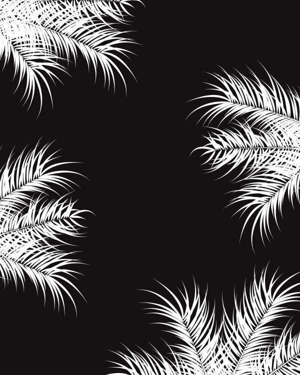 Tropical design with white palm leaves and plants on dark backgr