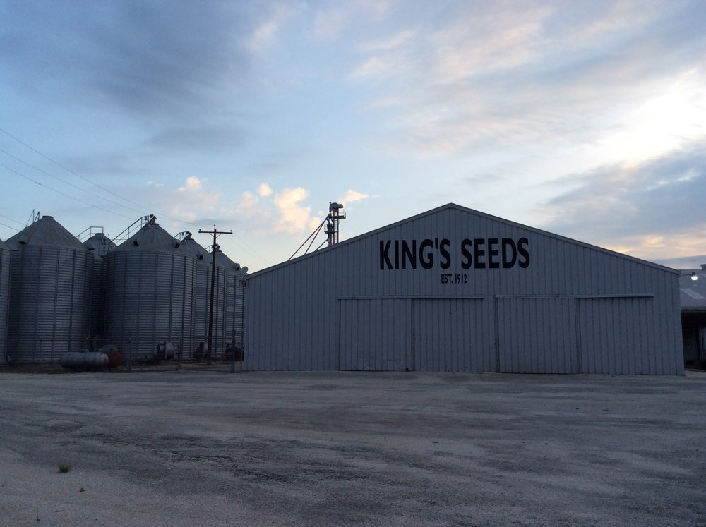 Douglass King Seeds today. 4627 Emil Road, San Antonio, TX.