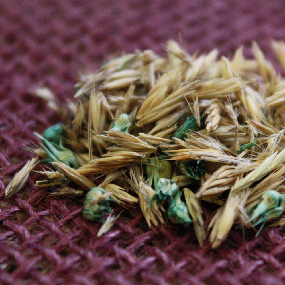 King's Native Grass Mix