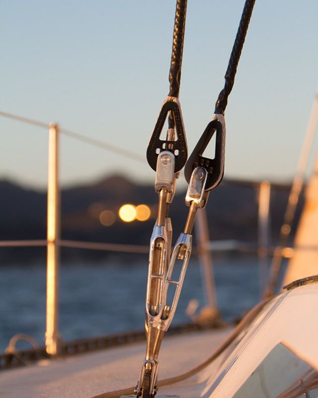 Photo courtesy Colligo Marine