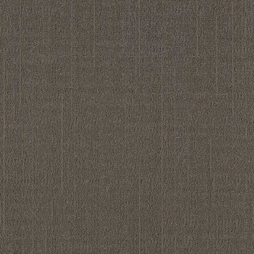TAUPE — 50036