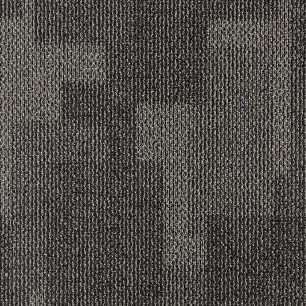 TELEGRAAF — 50141