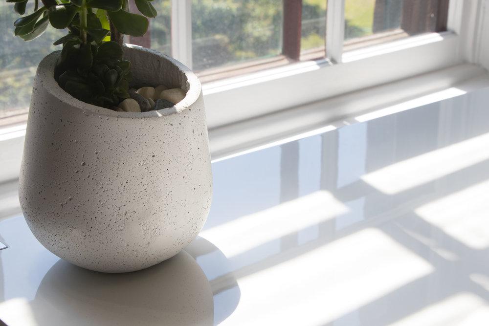 Tapis-Venture-plante-Inspiration-design.jpg