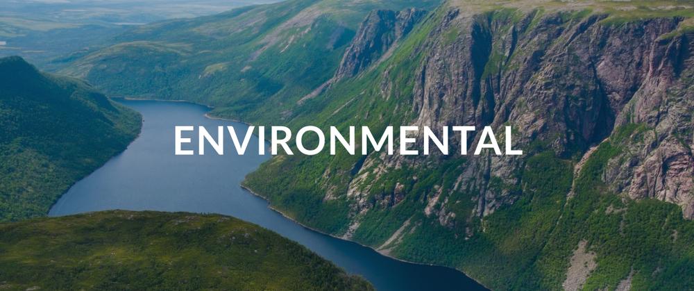 Environmental-Banner.png