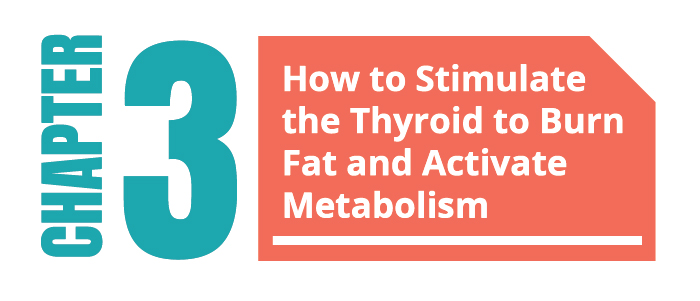 Stimulate the Thyroid to Burn Fat