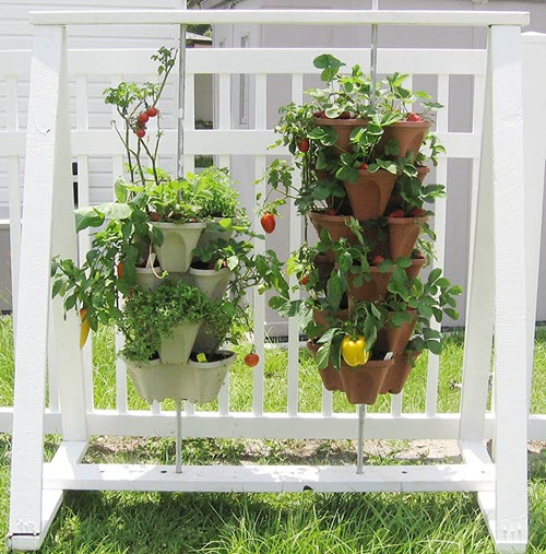 A planter with both fruits and vegetables