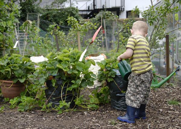 kid watering plants.jpg