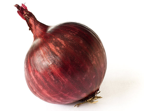 growing red onions.JPG