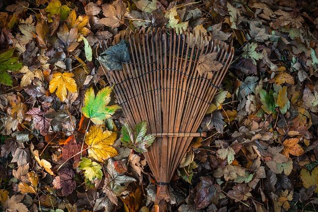 bamboo leaf rake.jpg