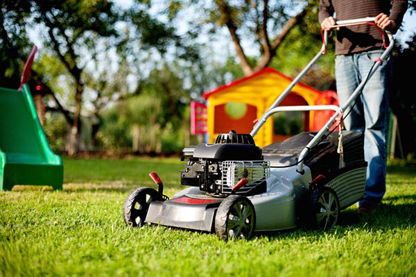 what to look for a push lawn mower.jpg