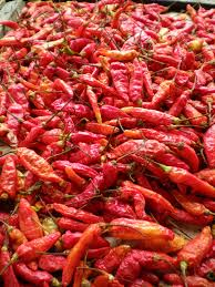 Oil or sauces from spicy peppers can be taste repellents.